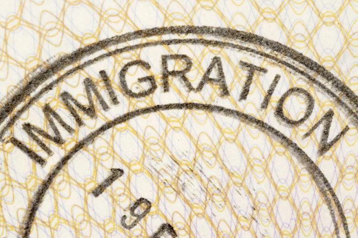 Разрешение на иммиграцию в Украину.